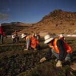 desarrollo mineria comunidades