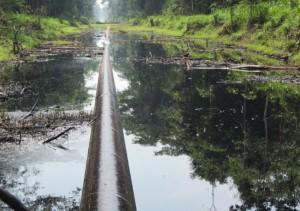 Se vertieron 4,040 barriles de petróleo en últimos derrames en Loreto, según OEFA