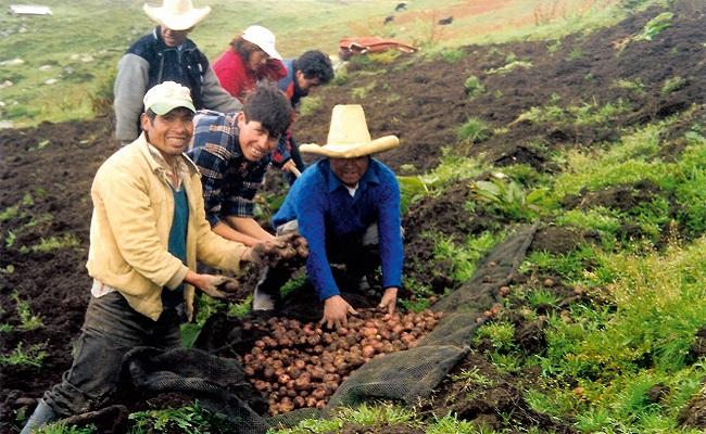 antamina-presenta-avance-de-proyectos-sociales-para-llata-en-huanuco
