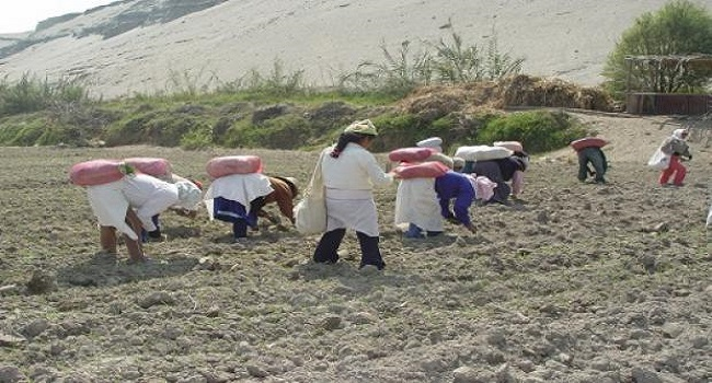 cajamarca-region-mayor-inversion-social-2016-segun-mem