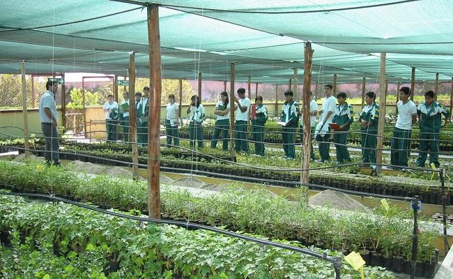cerro-verde-instruyo-a-2-mil-estudiantes-en-desarrollo-sostenible