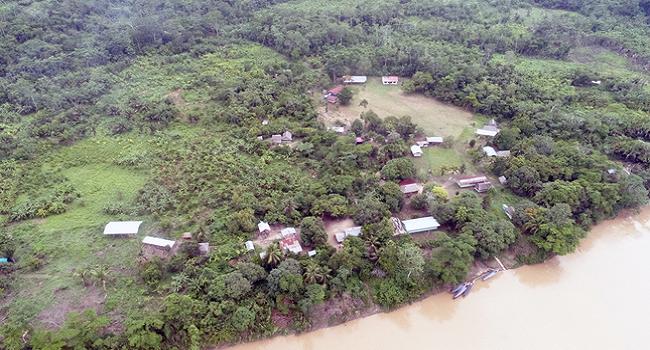 minam-peru-pierden-155-mil-hectareas-bosques-deforestacion