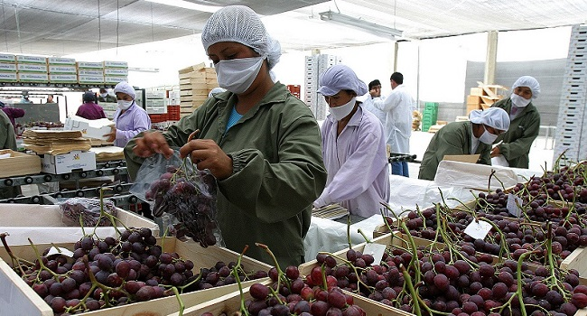 mincetur-exportaciones-peruanas-sumarian-60-mil-millones-dolares-2021