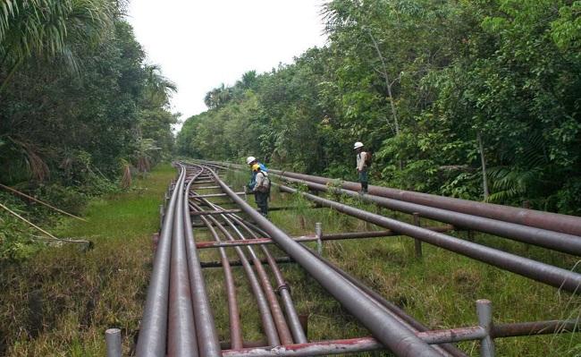 SNMPE urge implementar estrategia para proteger Oleoducto NorPeruano tras sistematicos ataques