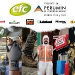 EFC PERUMIN 2019